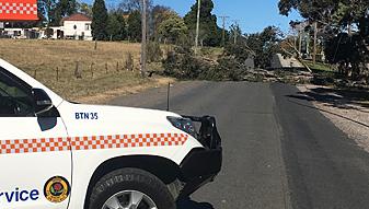 Wild Winds Impact NSW Metro and Illawarra Coastal Fringe