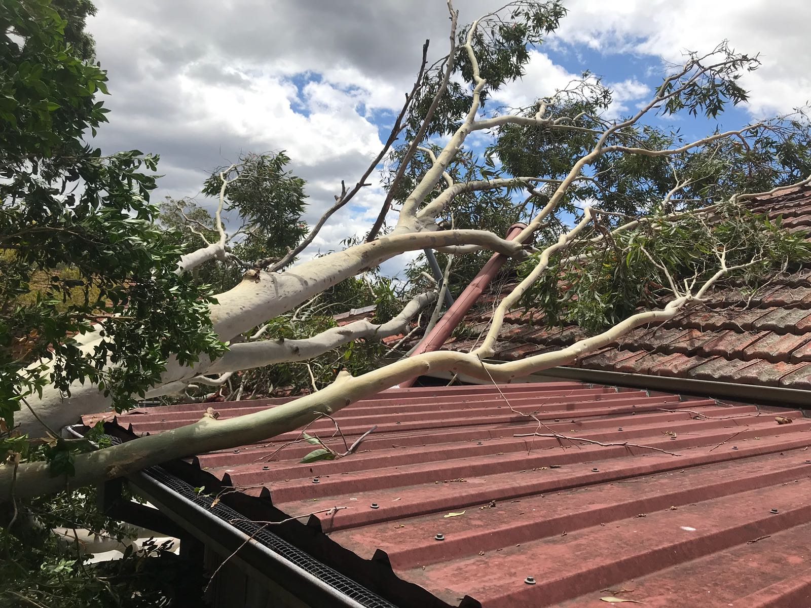 Communities urged to be vigilant as wild weather hits NSW