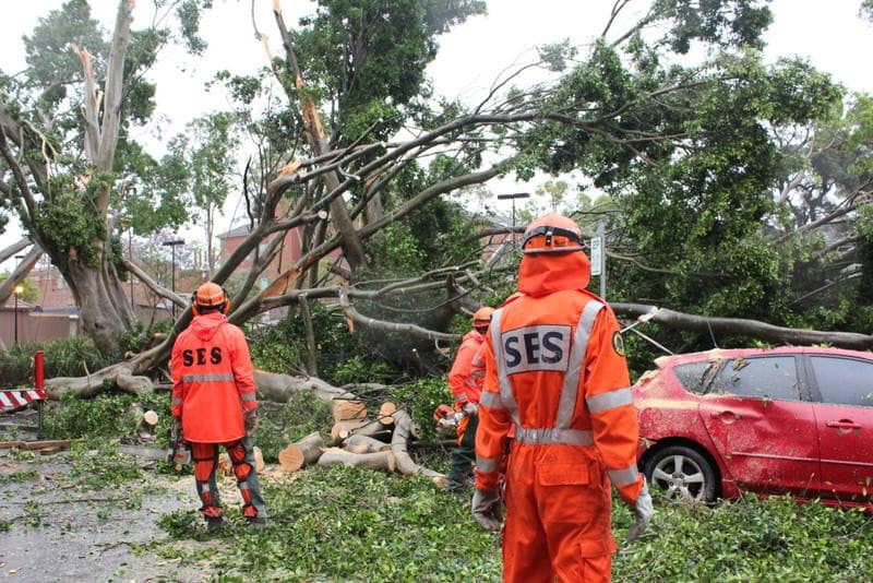 Remembering the storm that hit Hornsby