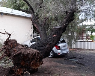 Storm Shakes up Moree's Main Street